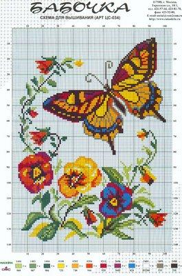 borboleta_e_flores