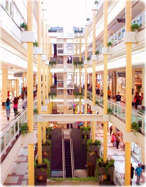 shopping-center6
