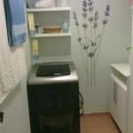Fotos de lavanderias residenciais decoradas5