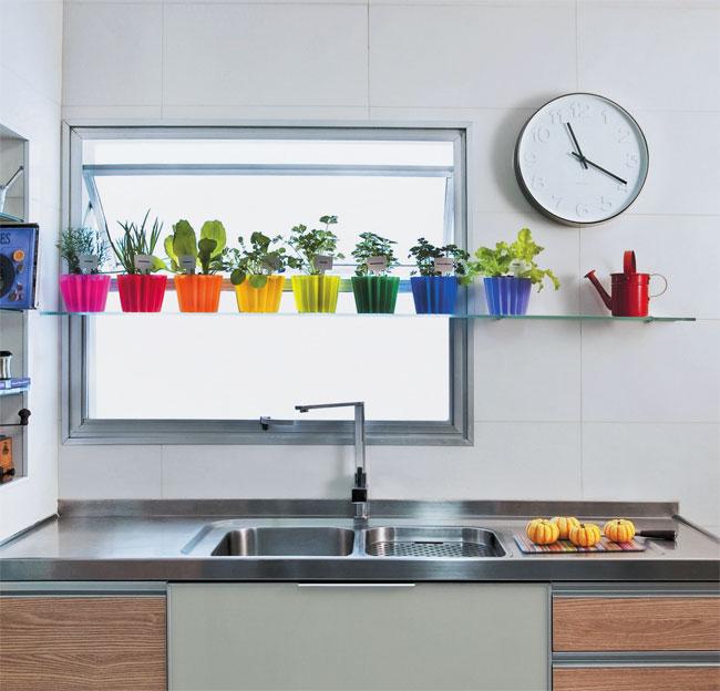 apartamento, assim é possível cuidar das plantas e usar para