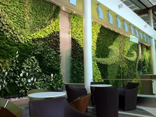 ideias jardins verticais : ideias jardins verticais:Ideias para jardins verticais