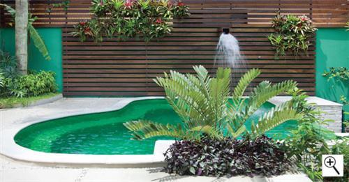 fotos jardins piscinas: opção moderna e elegante para rodear os muros próximos a piscina