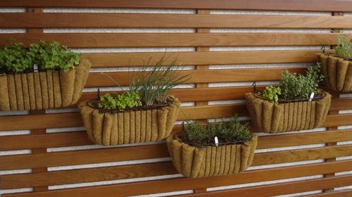 jardim vertical sacada:Jardim vertical em varandas (Foto:Divulgação).