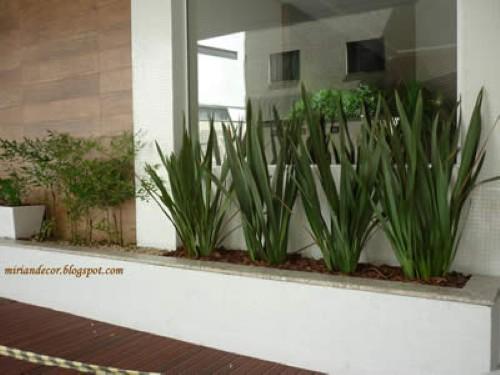 decoracao muros jardim:muro interno pode ter um espaço próximo a ele para o