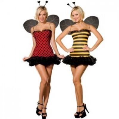 Fantasia de carnaval com asas