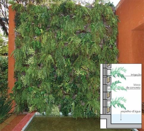 Dica de jardins verticais (Foto:Divulgação)