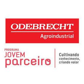 Trainee Odebrecht 2014