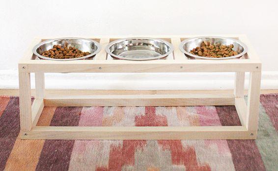 Ideia Barata para Fazer um Comedouro para Cães e Gatos
