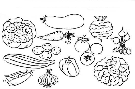 frutas e legumes para pintura