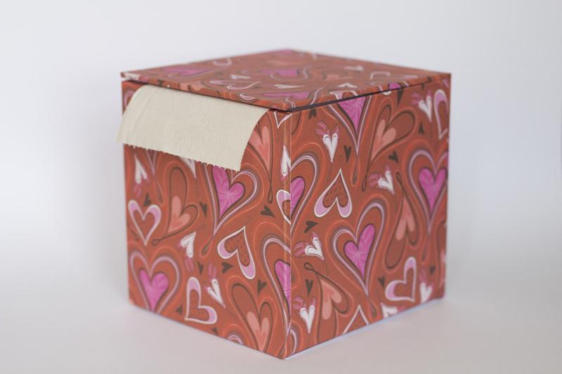 porta papel higienico de caixa