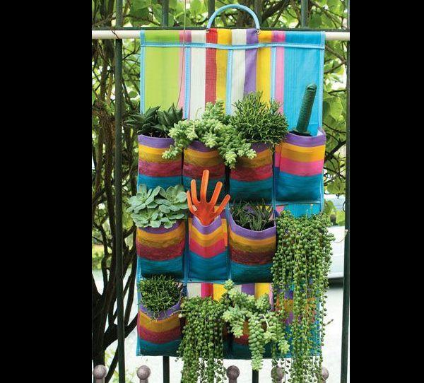 jardim vertical com organizador sapatos