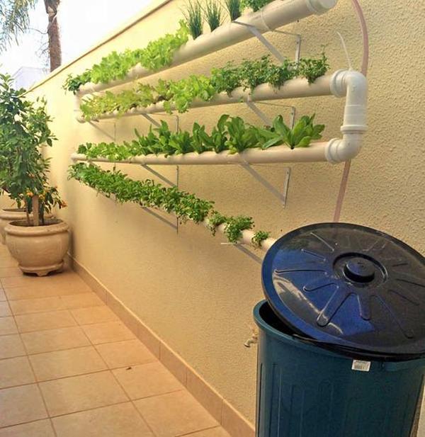 jardim vertical com tubo pvc