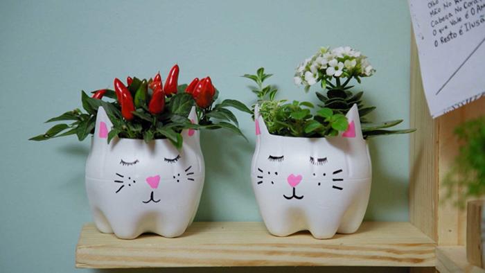 vaso caseiro de gato de pet