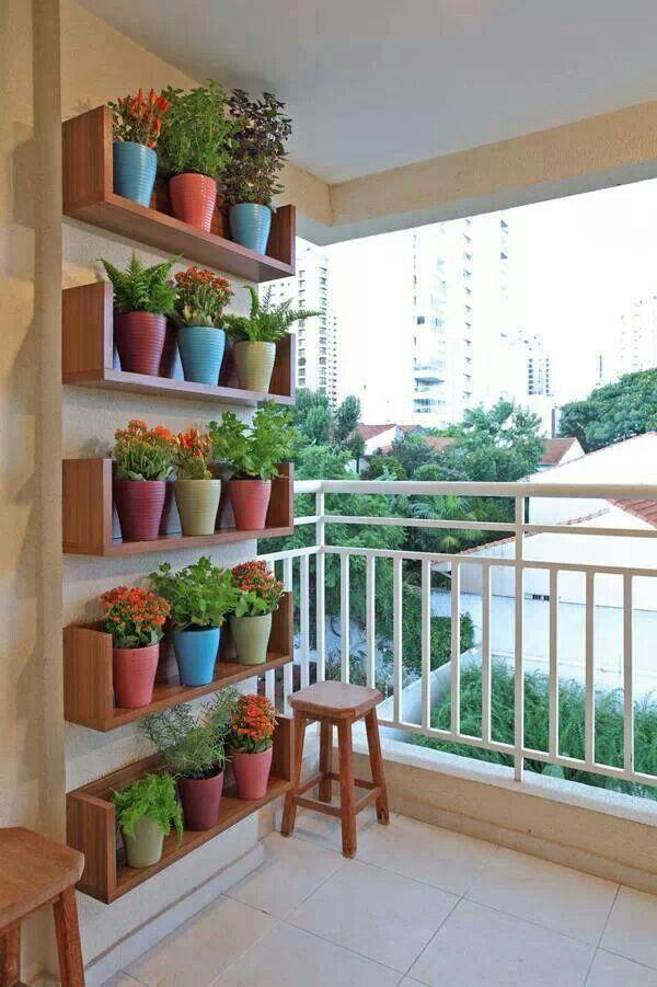 jardim vertical com vasos na prateleira