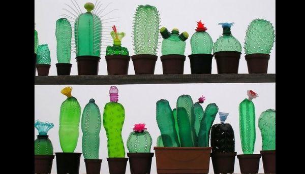 decoração com reciclagem  cactos