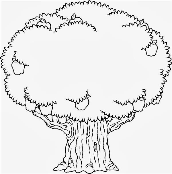 desenhos de árvores realistas