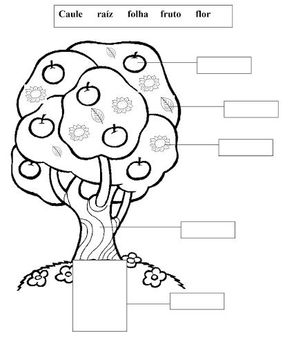 desenhos de árvores frutiferas