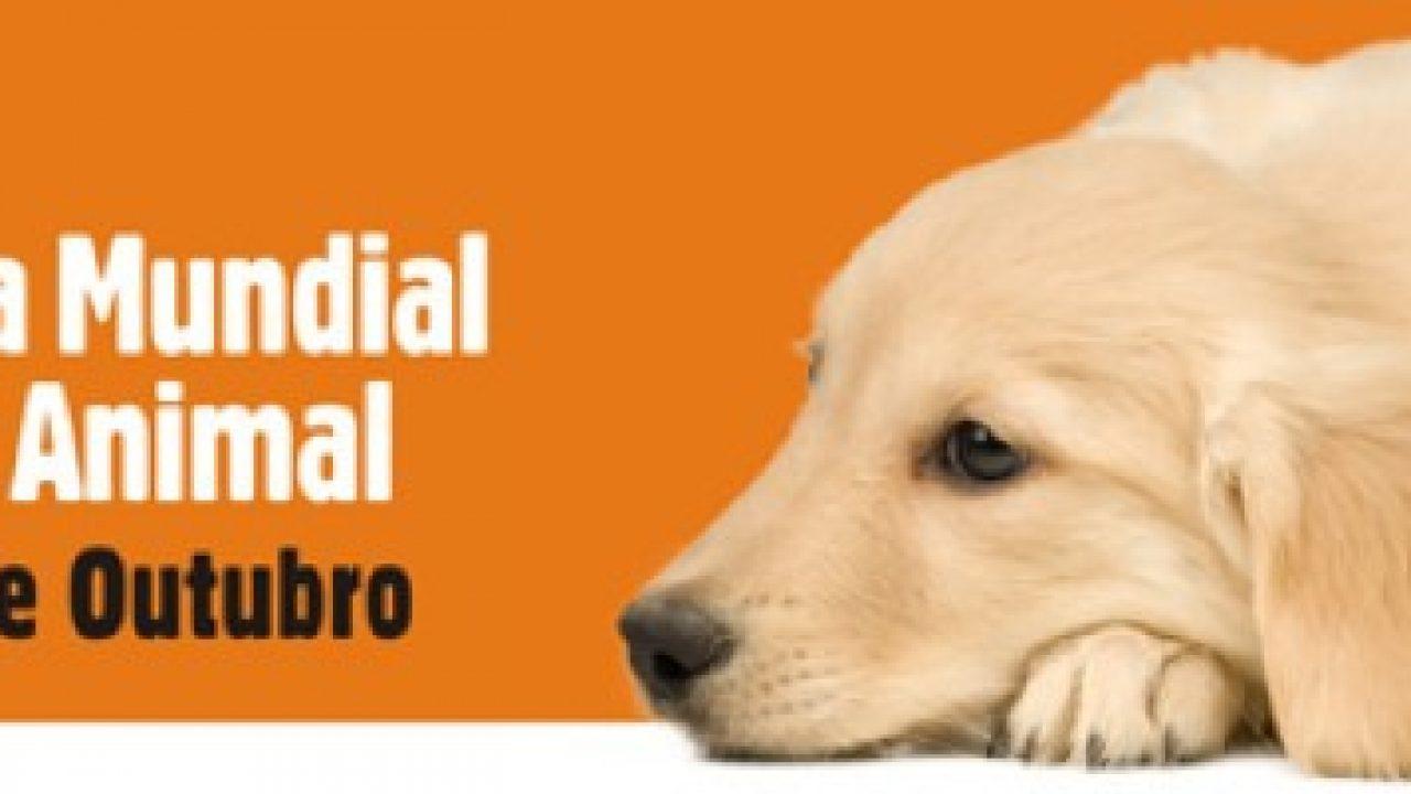 Frases Para O Dia Mundial Dos Animais