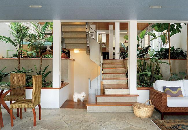 É possível ter um jardim dentro de casa. (Foto: Divulgação).