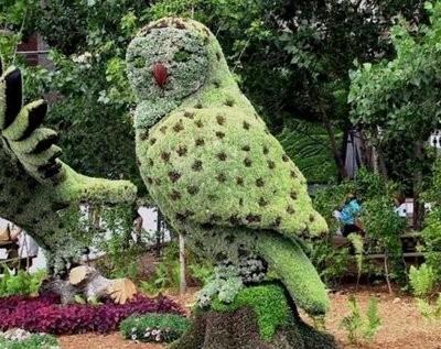 Dicas de jardinagem (Foto:Divulgação)