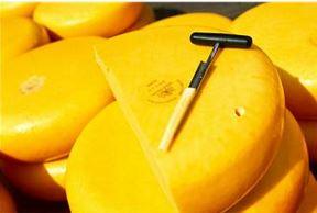 Curso de queijo e outras qualificações interessantes disponíveis em Xanxerê