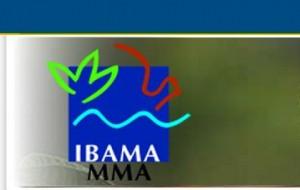 Vagas temporárias Ibama (Foto: divulgação)
