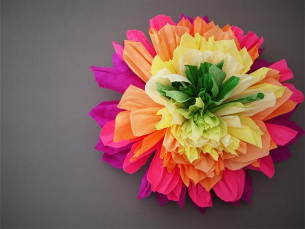 flor festa junina (Custom)