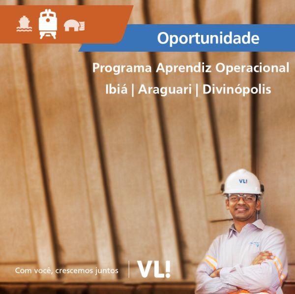 O programa trainee operacional VLI 2016 pode alavancar a sua carreira profissional  (Foto: vli-logistica.com)