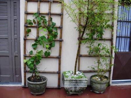 dicas para artesanato de bambu para jardim