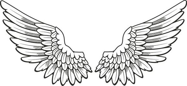 Como Fazer Asas de Anjo Passo a Passo