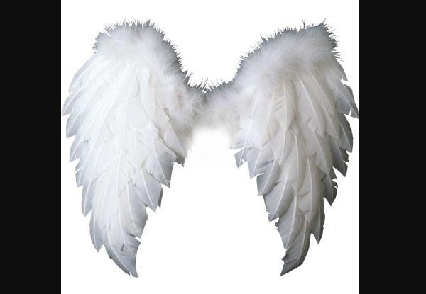 asas de anjo ficam - photo #24