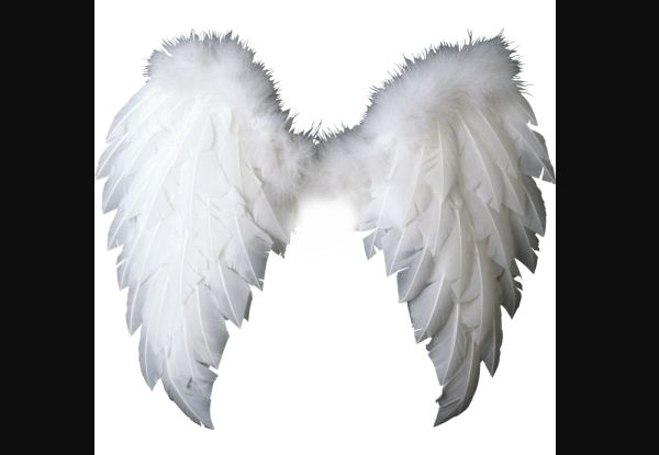 asa de anjo penas