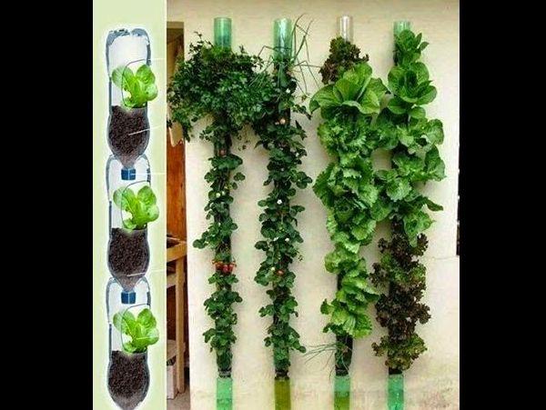 jardim vertical com garrafa pet