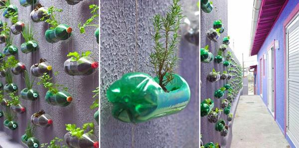 jardim vertical com pets
