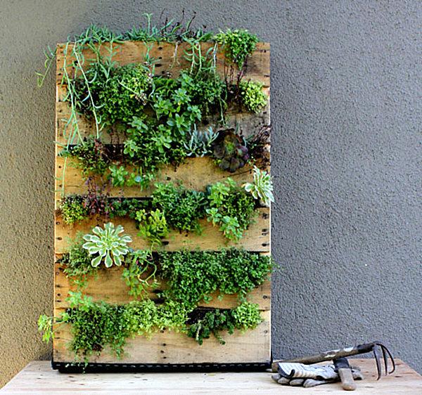 jardim vertical com prateleiras