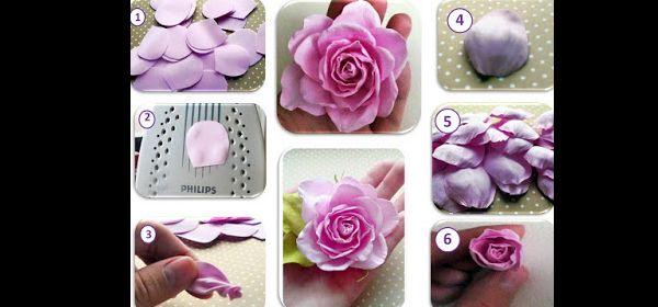 rosa flor em EVA