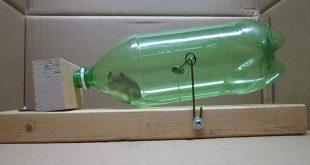 ratoeira humanizada com pet