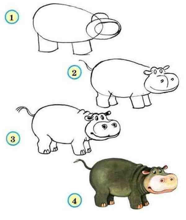 hipopotamos