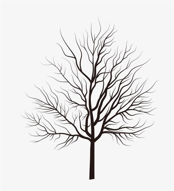 desenhos de árvores com passaros