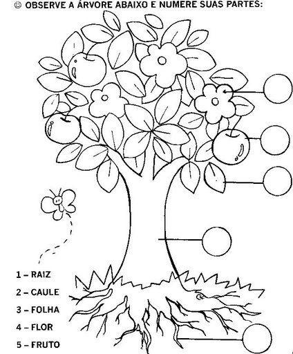 desenhos de árvores para pintar